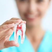 Dentista bom